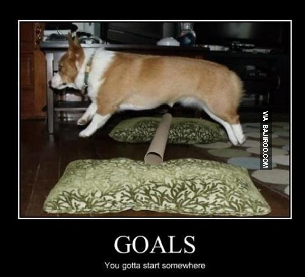 funny-its-good-to-have-goals-meme